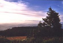 Marys Peak and coast ranges