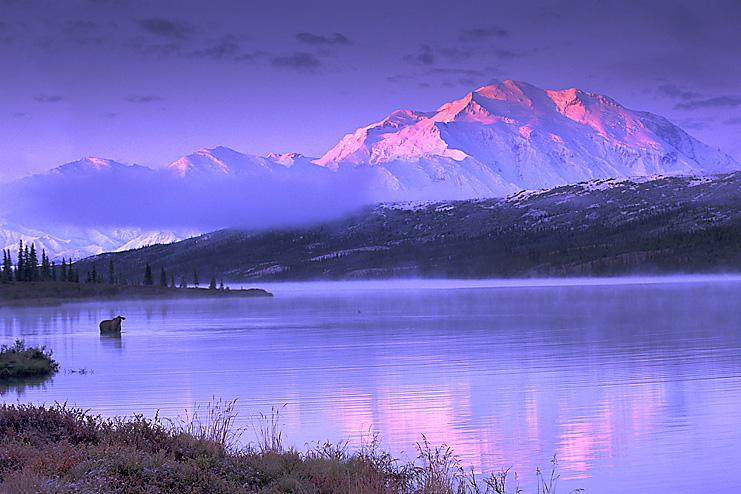 The Next 100 Years >> Mount McKinley 2013 - Introduction